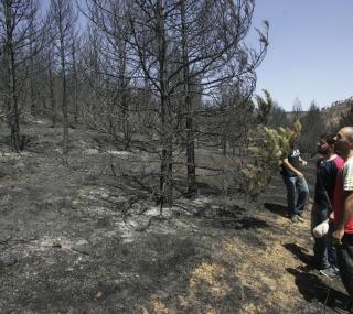 ¿están nuestros montes preparados para combatir un gran incendio?